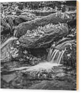 Waterfall Great Smoky Mountains Painted Bw    Wood Print