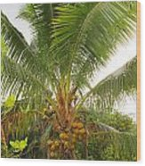 Westmoreland Jamaica 4 Wood Print