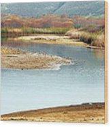 Wetlands Of Scott Creek Wood Print