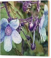 Wild Blue Rose Wood Print