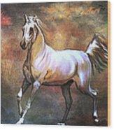 Wild Horse. Wood Print
