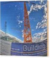 001 Building Buffalo  Wood Print