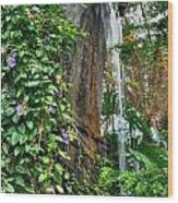 001 Falling Waters For The Cactus Lover In You Buffalo Botanical Gardens Series Wood Print