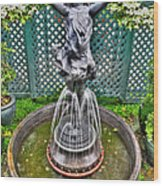 001 Fountain Buffalo Botanical Gardens Series Wood Print