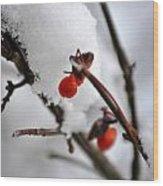 001 Frozen Berries Wood Print