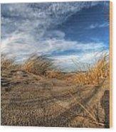 0010 Presque Isle State Park Series Wood Print