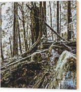 _0010060 Wood Print