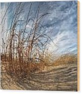 0011 Presque Isle State Park Series Wood Print