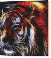 0012 Siberian Tiger Wood Print