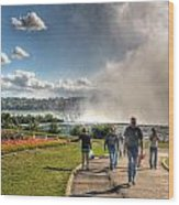0014 Niagara Falls Misty Blue Series Wood Print