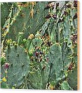 002 For The Cactus Lover In You Buffalo Botanical Gardens Series Wood Print