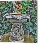 002 Fountain Buffalo Botanical Gardens Series Wood Print