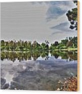 002 Reflecting At Forest Lawn Wood Print