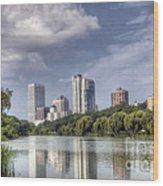 0041 Milwaukee Wisconsin Wood Print