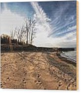 008 Presque Isle State Park Series Wood Print
