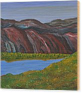 009 Landscape Wood Print