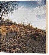 009 Presque Isle State Park Series Wood Print