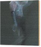 01 24 2013 Dancer 2 Wood Print