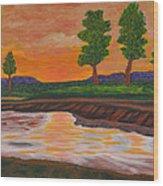 011 Landscape Wood Print