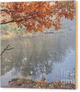 0132 Autumn At Starved Rock Wood Print