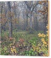 0133 Misty Meadow 2 Wood Print