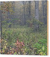 0134 Misty Meadow Wood Print