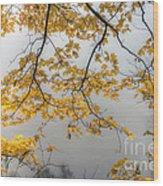0135 Autumn Gold  Wood Print