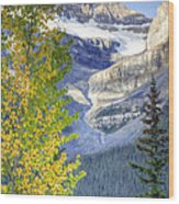 0141 Fall Colors On Icefield Parkway Wood Print