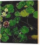 0148-lily -   Pastel Chalk 1 Sl Wood Print