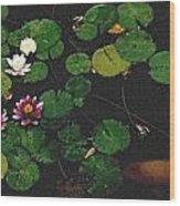0148-lily -   Pastel Chalk 2 Sl Wood Print