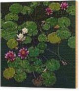 0151-lily -   Expressionist Plein Air Sl Wood Print
