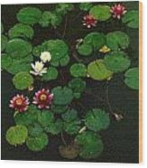 0151-lily -  Colored Photo 1 Wood Print