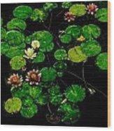 0151-lily -  Pastel Chalk 1 Sl Wood Print