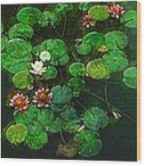 0151-lily - Academic Wood Print