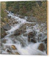 0192 Glacial Runoff Wood Print
