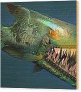 Iron Fish   Wood Print