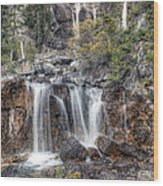 0202 Tangle Creek Falls 5 Wood Print