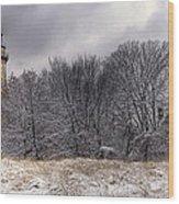 0243 Grosse Point Lighthouse Evanston Illinois Wood Print
