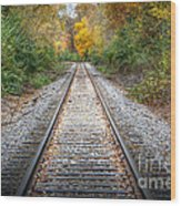 0276 Tracks Wood Print