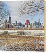 0452 Chicago Skyline Wood Print