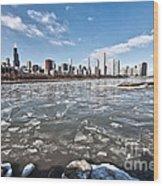 0486 Chicago Skyline Wood Print