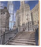 0499 Trump Tower And Wrigley Building Chicago Wood Print