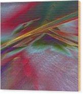 0538 Wood Print