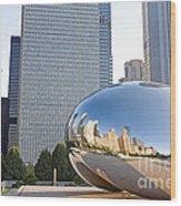 0553 Millennium Park Chicago Wood Print