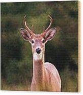 070306-34 Wood Print