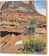 0712 Guardian Of Canyonland Wood Print