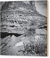 0715 Guardian Of Canyonland Wood Print