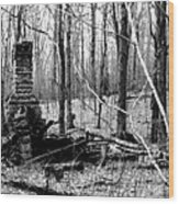 072606-32bw  Once Upon A Time There Was A Cabin In A Forest.. Wood Print