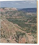 07.30.14 Palo Duro Canyon - Lighthouse Trail 5e Wood Print