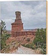 07.30.14 Palo Duro Canyon - Lighthouse Trail 62e Wood Print